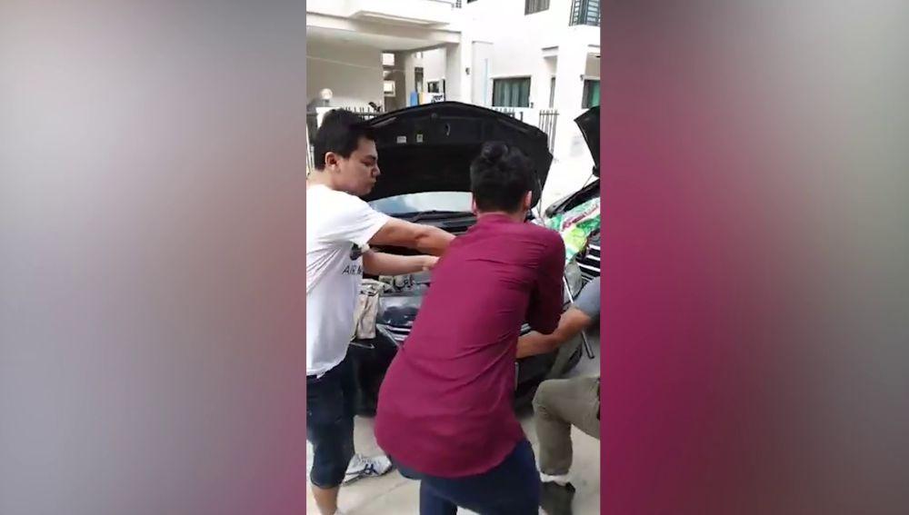 Encuentran un lagarto en el motor