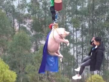 Imagen del cerdo en la atracción china