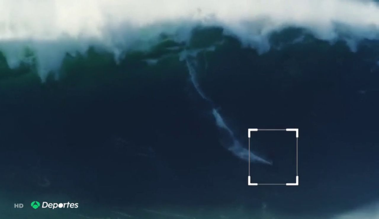REEMPLAZO SURFISTA
