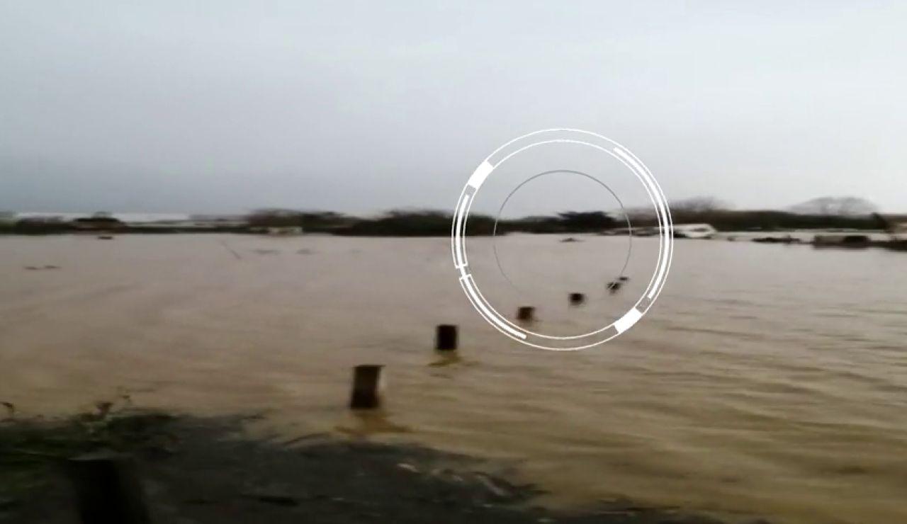 Un joven atraviesa nadando la corriente causada por el temporal 'Gloria' para salvar a su perro atrapado