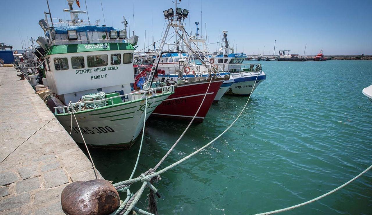 Imagen de archivo del Puerto de Barbate