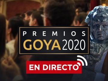 Premios Goya 2020: La Gala de los Goya, streaming en directo