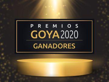 Premios Goya 2020: Lista de ganadores de los Goya