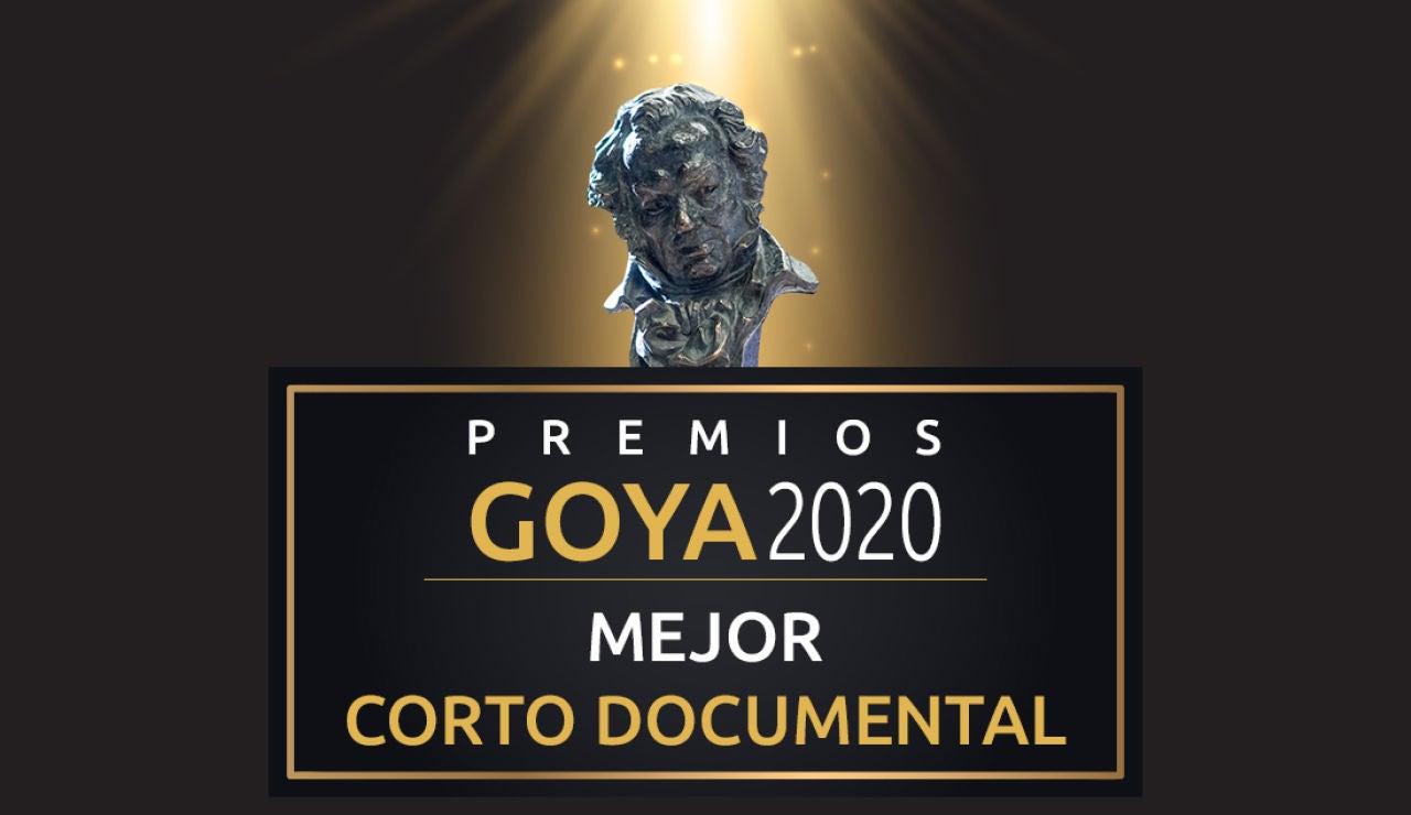 Premios Goya 2020: Mejor corto documental de los Goya