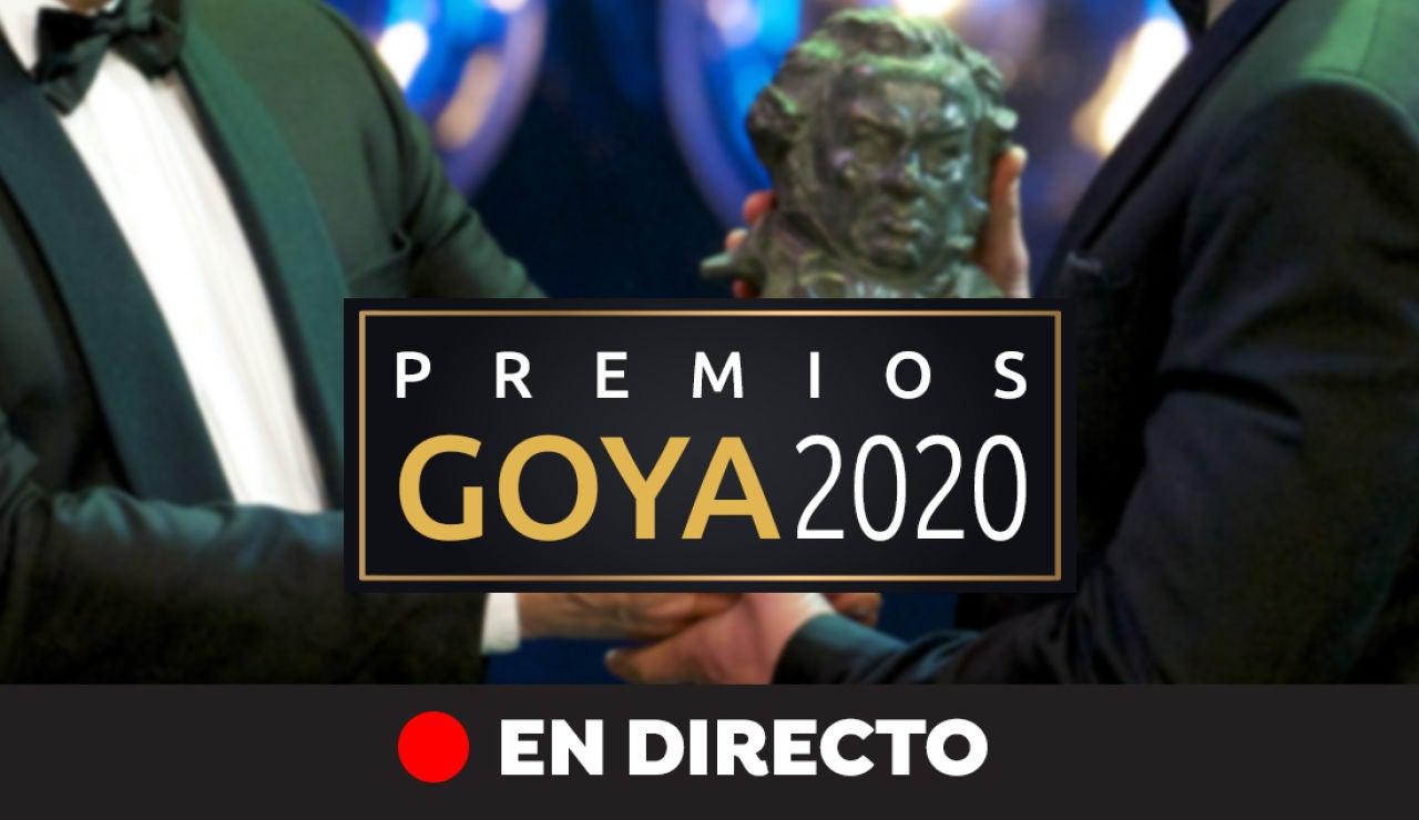 Premios Goya 2020: La gala y los ganadores de los Premios Goya, en directo