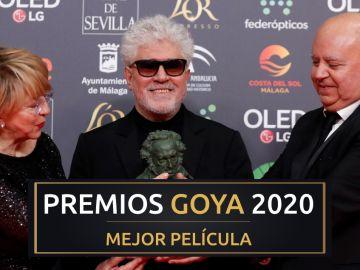 Premios Goya 2020: 'Dolor y Gloria', mejor película de los Goya