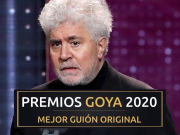 Premios Goya 2020: Pedro Almodóvar, mejor guión original por 'Dolor y gloria'