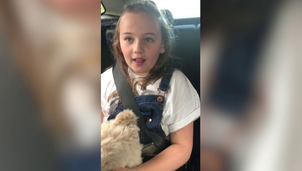Recibe un perro por sorpresa