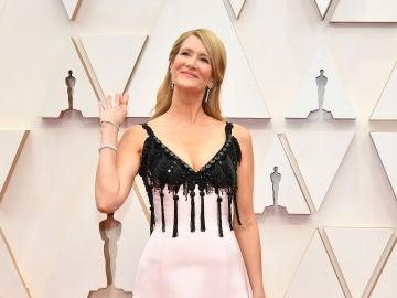 Premios Oscar 2020: Laura Dern en la Afombra roja de los Oscar