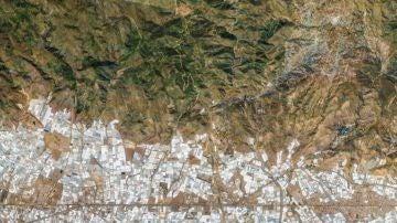 Vícar (Almería), en el poniente almeriense, con la Sierra de Gádor destacada.