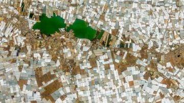 El Ejido (Almería). Los invernaderos cubiertos de plásticos desde el satélite. Andalucía presenta los peores indicadores de España en renta per cápita, paro y esperanza de vida según el INE