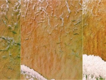 Imágenes a vista de dron de New Smyrna Beach