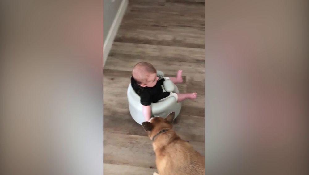 Jax, el bebé montado en el aspirador Roomba