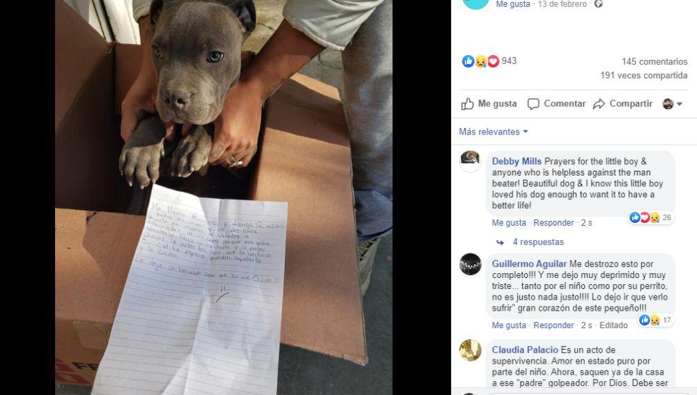 Perrito abandonado en un refugio