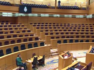 El Senado ofrece una imagen insólita al celebrar su primer pleno completamente vacío