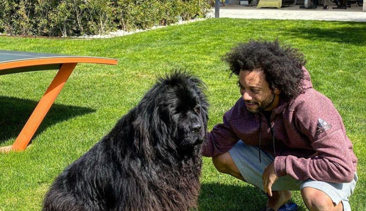 Marcelo, junto a su perra
