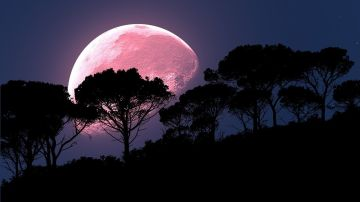 Luna Llena Rosa 2020: ¿Cuándo y cómo ver la luna rosa desde España?