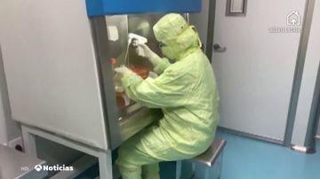 China ensayará en humanos dos posibles vacunas del coronavirus