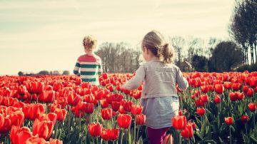 Día del Niño 2020: ¿Por qué se celebra el 15 de abril en España?