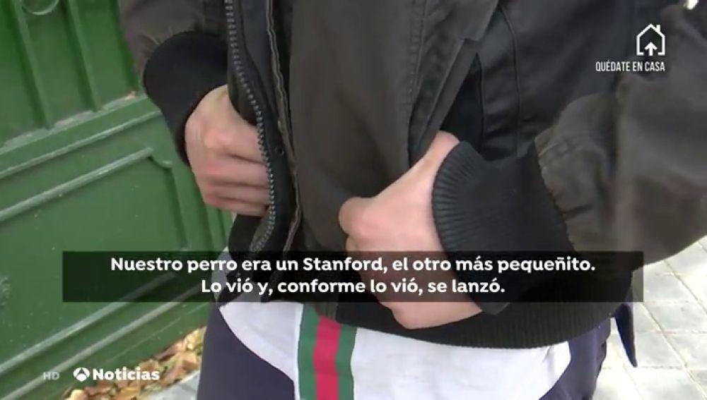 Unos okupas de un chalé de Madrid atemorizan a sus vecinos después de que su perro haya matado a dos canes