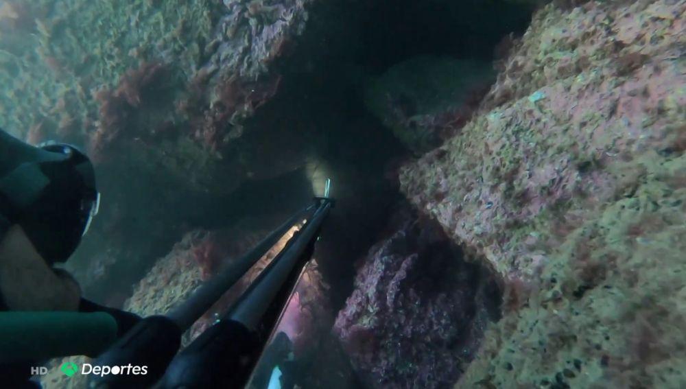 Pedro vuelve a practicar pesca submarina tras las críticas de los cazadores a la desescalada del coronavirus