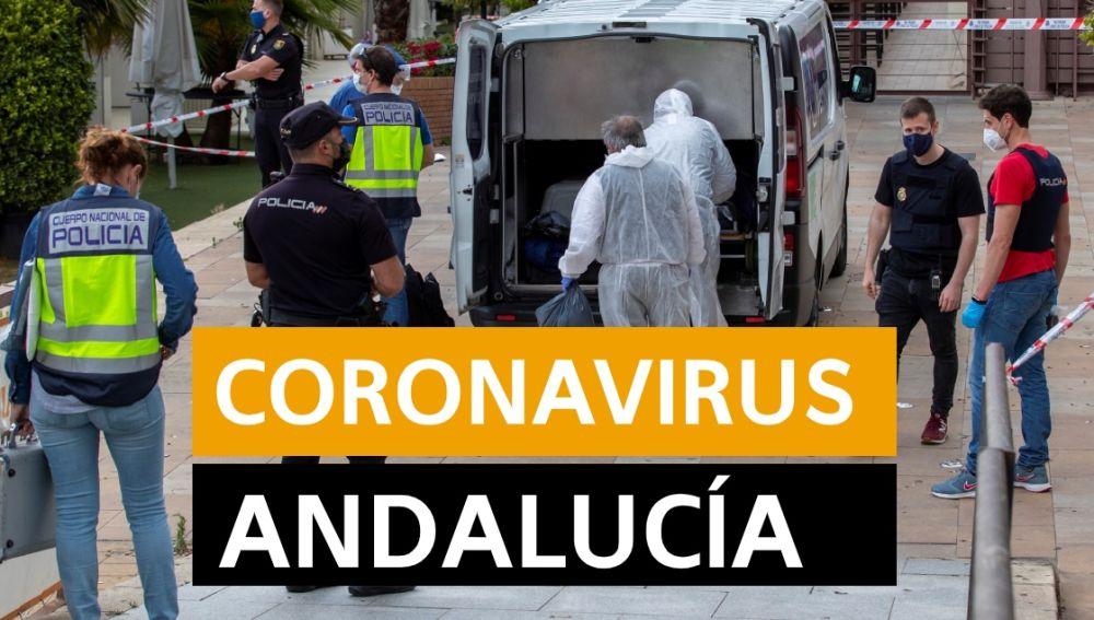 Coronavirus Andalucía: Fase desescalada y últimas noticias de hoy, en directo   Última hora Andalucía