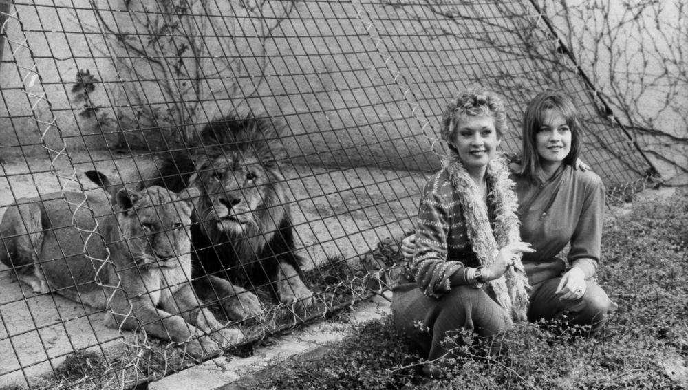 Tippi Hedren y Melanie Griffith en el zoo de Londres