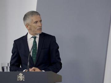 Fernando Grande-Marlaska comparece en el Senado