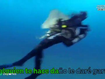 """Varios ataques de tiburones angelotes a bañistas en Canarias: """"Su respuesta es agresiva"""""""