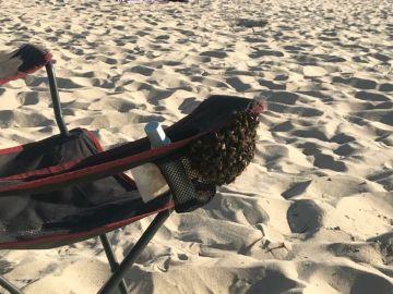 Cientos de abejas se instalaron en el reposabrazos de una silla en Samil