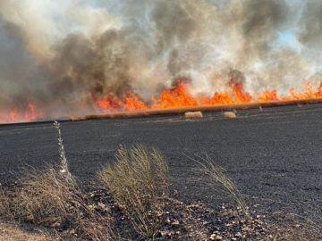 El incendio se ha registrado cerca de la zona de El Pardillo