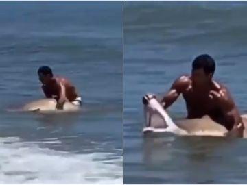 El vídeo viral de la pelea a muerte entre un hombre y un tiburón en Estados Unidos