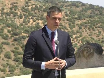"""Pedro Sánchez hace un llamamiento a la tranquilidad por los rebrotes de coronavirus: """"Hay que aprender a vivir con el virus"""""""