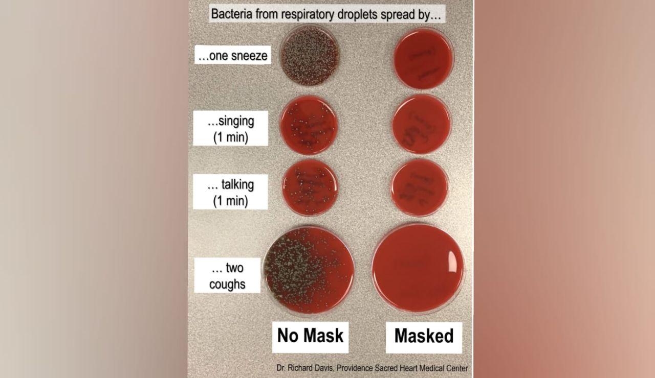 Estudio sobre los gérmenes que expulsamos al toser