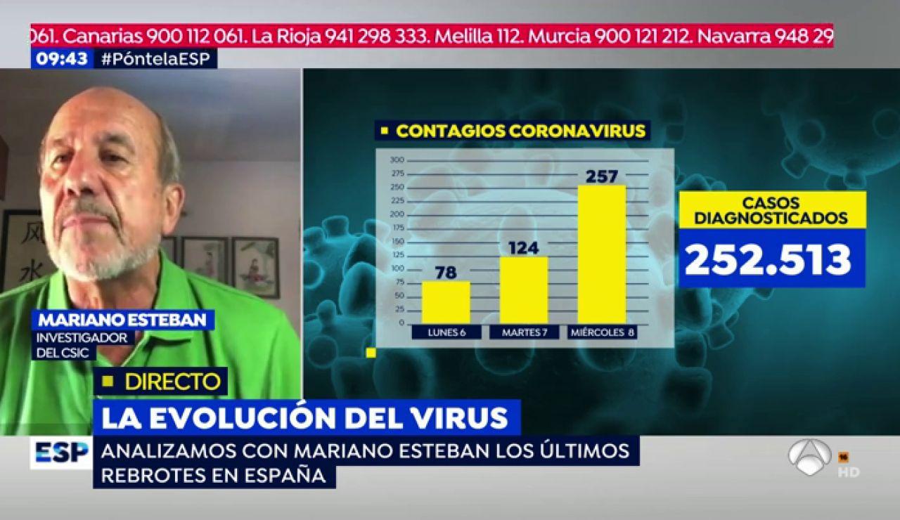 virologo