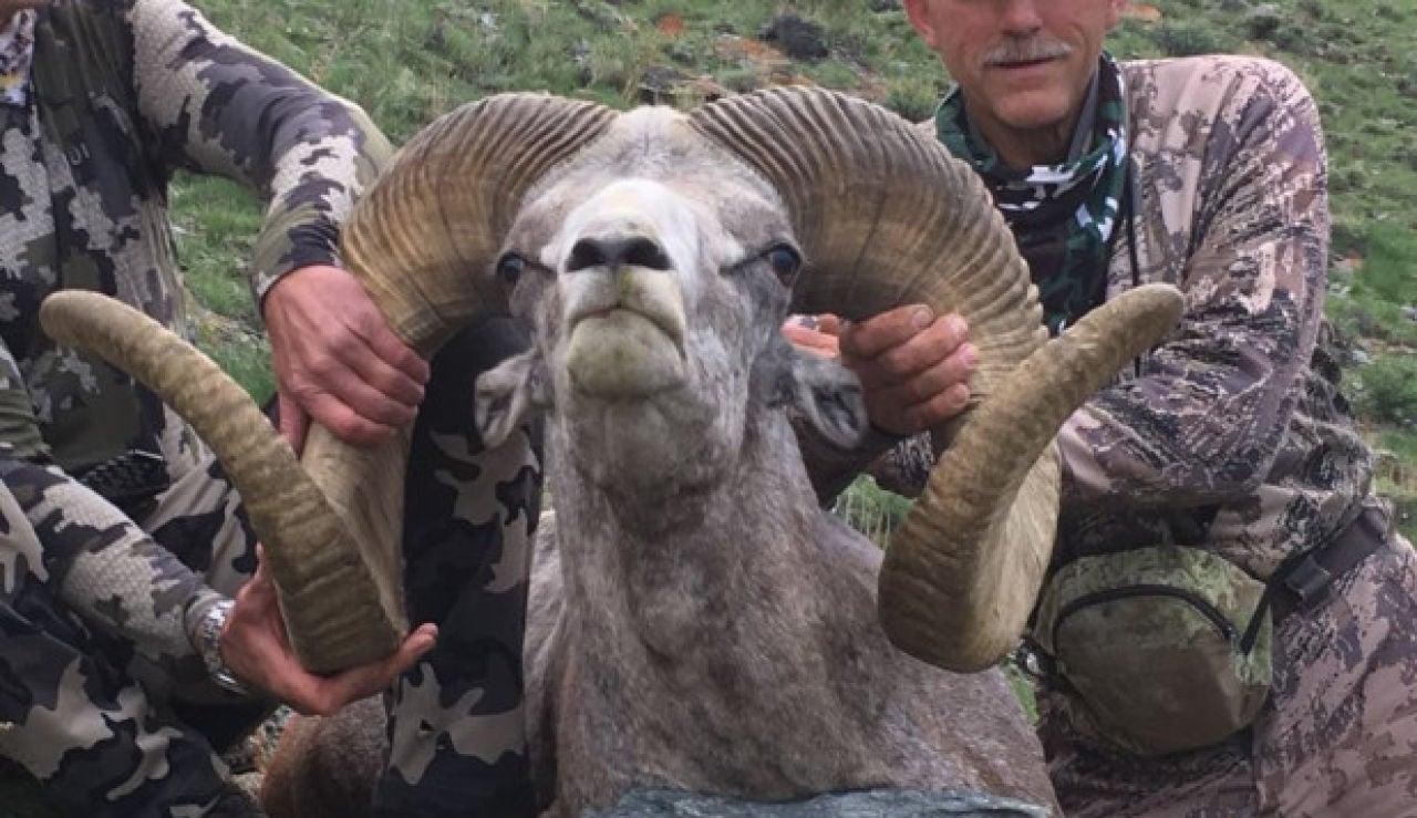 El carnero cazado por Walter Palmer