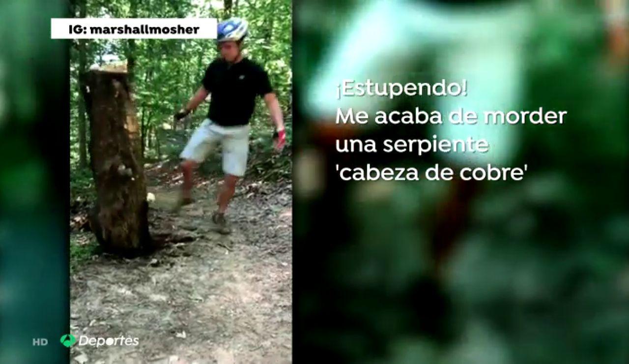 La angustiosa carrera de un ciclista en busca del antídoto tras la mordedura de una serpiente venenosa