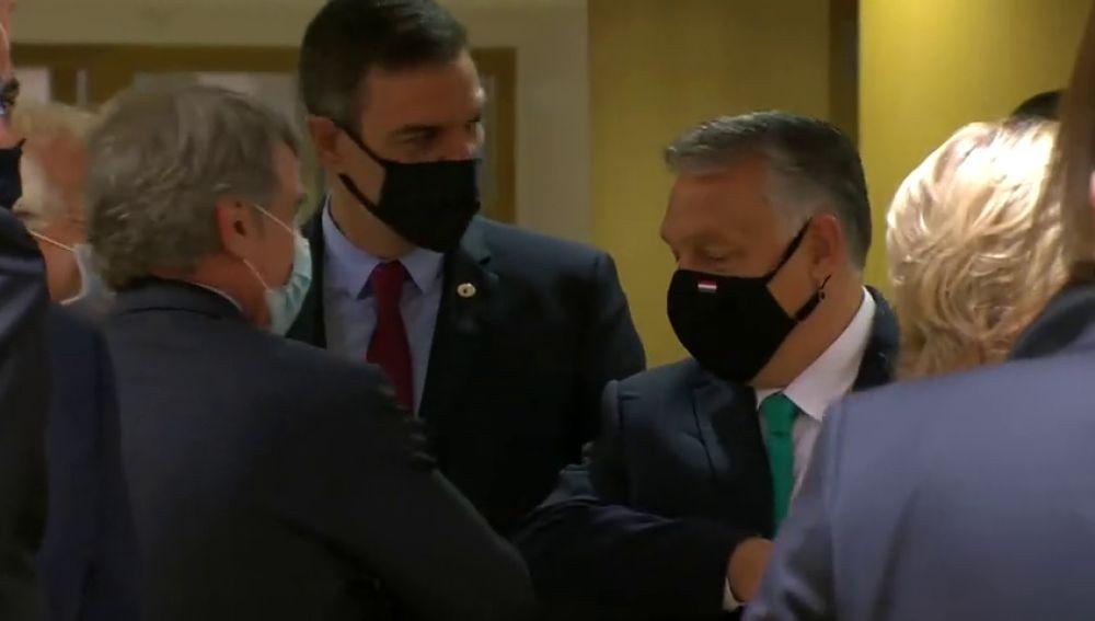 Países Bajos deja claro en el Consejo Europeo que solo permitirá subvenciones para el coronavirus si hay reformas