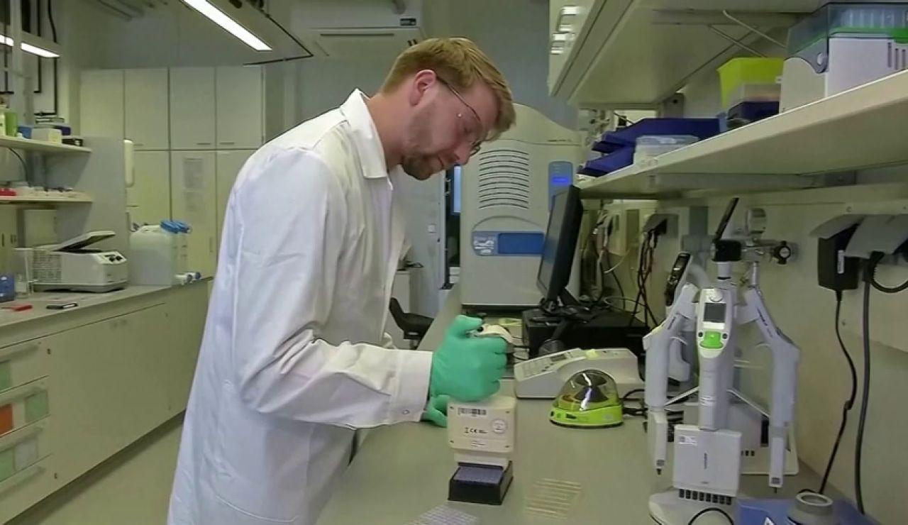 Los resultados de la vacuna contra el coronavirus de Oxford demuestran que produce anticuerpos y células que atacan al virus