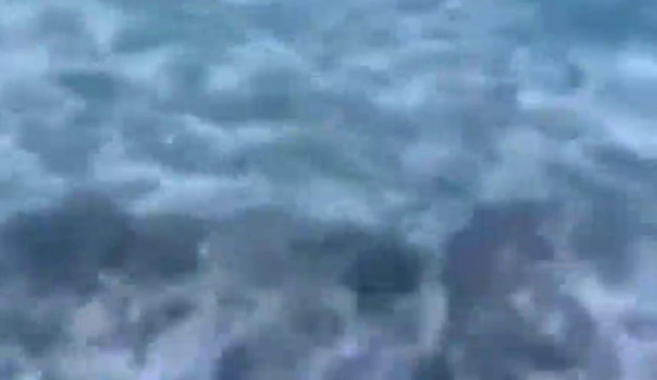 Un policía fuera de servicio rescata a un niño del ataque de un tiburón