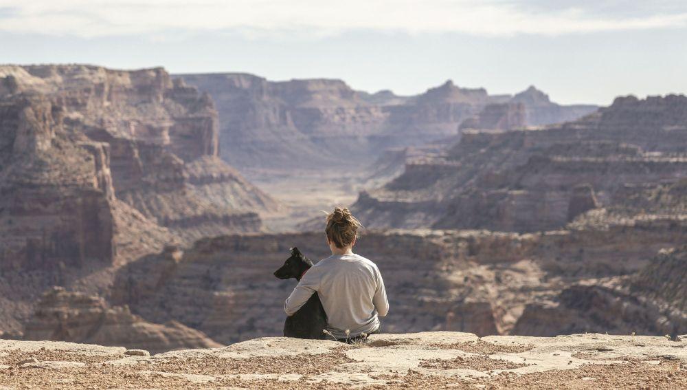 Vacaciones 2020: Cómo viajar con perro
