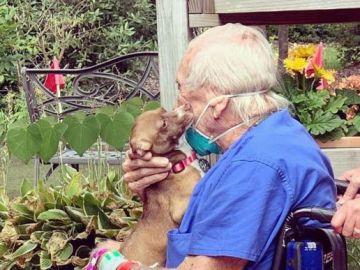 Un anciano salva la vida gracias al entrenamiento de su perro