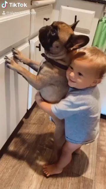 VÍDEO: La adorable relación de este niño con sus dos perros está derritiendo corazones