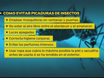 Las recomendaciones para evitar la picadura del mosquito invasor 'Aedes japonicus' que transmite la meningoencefalitis