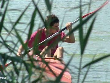 """El virus del Nilo preocupa a los piragüistas del Guadalquivir: """"Es un problema grave"""""""