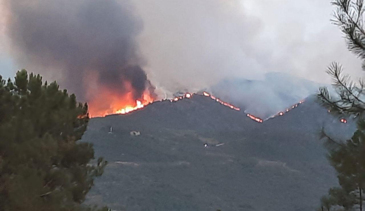 Incendio en Cualedro (Ourense)