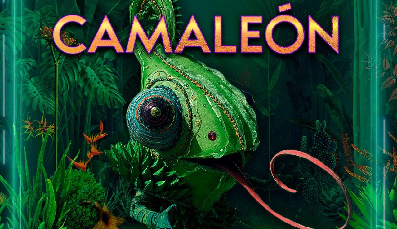 Cambia su color y puede confundirnos con su impresionante mimetización, el Camaleón
