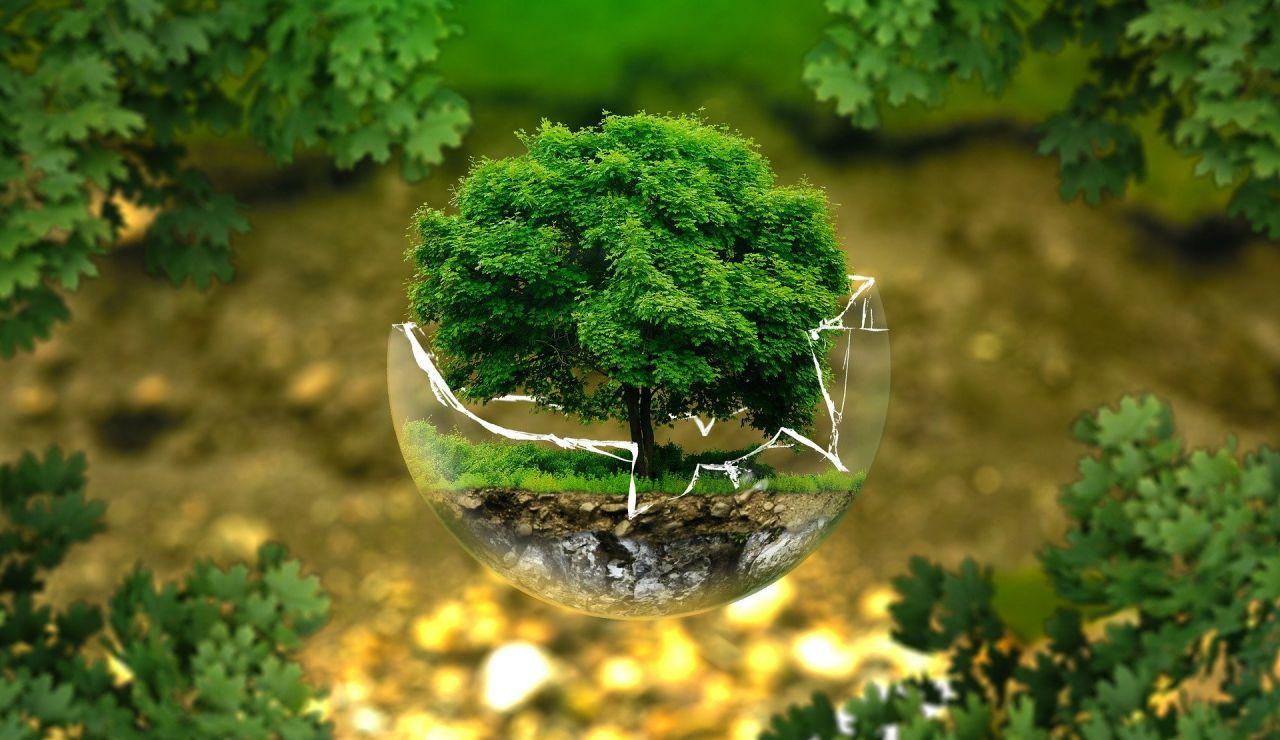 Día de la Preservación de la Capa de Ozono 2020: ¿Cómo está el agujero de la capa de ozono? Todas las claves de la recuperación