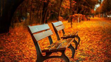 Otoño: ¿Cuándo empieza el otoño en 2020?