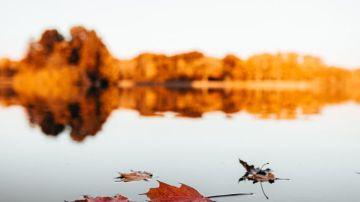 El otoño comienza el 22 de septiembre a las 15:31 h